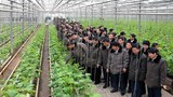 agriculture_deligate_b