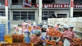seafood_factory_b