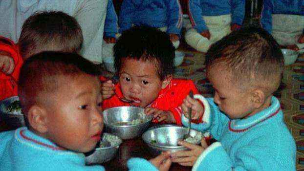 Orphaned_NK_children_b