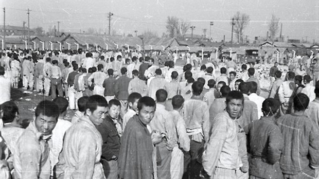 사진은 한국전쟁 당시 평양 포로수용소의 모습.