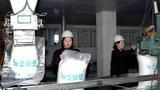 fertilizer_production_workers-620.jpg