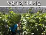 세계적인 첨단 농법- '스마트 팜'과 북한 실태