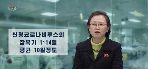 북한 조선중앙TV는 28일 '생명을 위협하는 신형코로나비루스' 제목의 보도에서 신종 코로나바이러스 감염증인 '우한 폐렴'의 주변국 발병 동향과 증상, 예방대책 등을 소개했다.