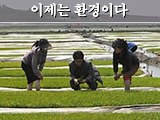 남북한, 인체 및 생태계 보호 위해 살충제 사용 최소화하고 친환경농법 장려해야